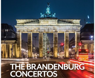 Brandenburg Gate Image with tree